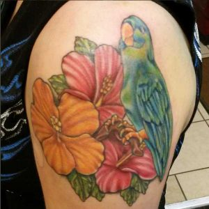 Hibiscus and Parrot